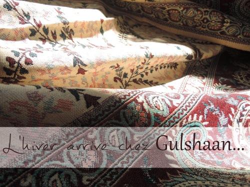 Châle Gulshaan