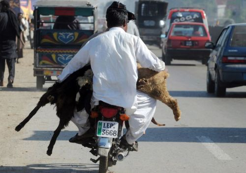 Eid Pakistan