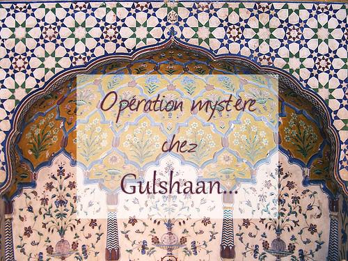 Opération Mystère chez Gulshaan