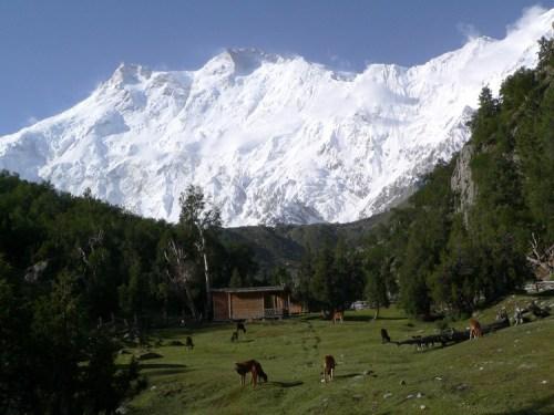Nanga Parbat, Pakistan, 8126 m